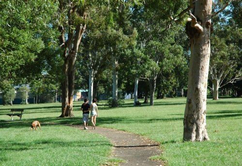 couple walking down path surrounded by gum trees and dogs inside Kroll Gardens Dog Off Leash Park Clontarf